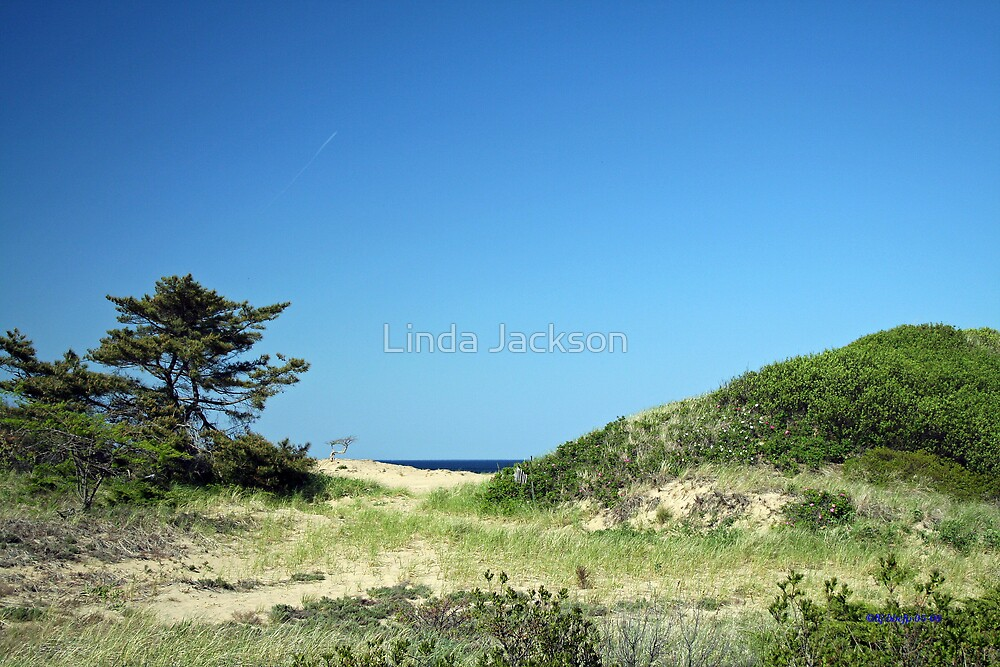 By the Sea by Linda Jackson