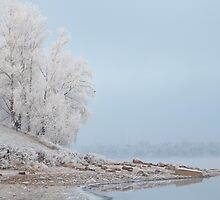 morning fog in winter by mrivserg