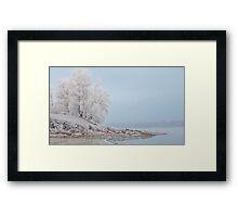 morning fog in winter Framed Print