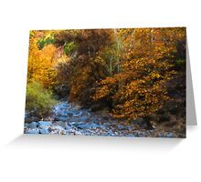 Blue Stones, Yellow Leaves - a Dry River Impressions Greeting Card