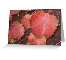 Leaves two Greeting Card