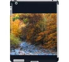 Blue Stones, Yellow Leaves - a Dry River Impressions iPad Case/Skin