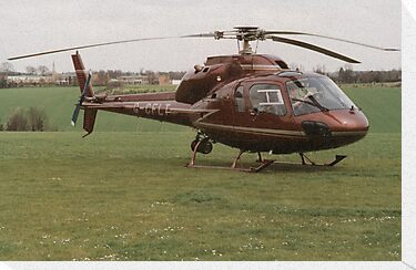 Eurocopter AS355 Ecureuil 2 - F1 Twin Squirrel by Edward Denyer