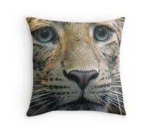 leopard in Jardin des Plantes in Paris  Throw Pillow