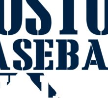 ALL I CARE ABOUT IS BOSTON BASEBALL Sticker