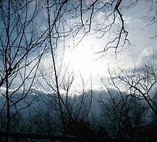 Enlightened Evening by Sarai