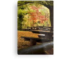 Autumn Canopy Metal Print