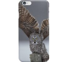 Mighty wings... iPhone Case/Skin