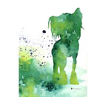 Green abstract chinese crested artwork watercolor painting Photographic Print