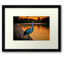 """Do I Jump or Don't I ?"" Framed Print"