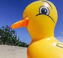 Rubber Ducky by Sally Smith