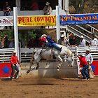 Pure Cowboy by Janet Houlihan