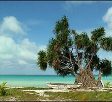 Fanning Island, Republic of Kiribati by Koala