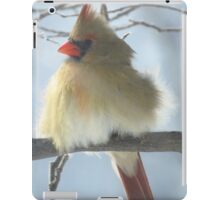 Softness in the Harshness of Winter iPad Case/Skin