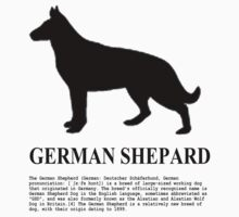 German Shepard by benyuenkk