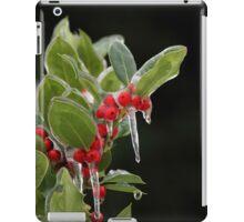 Holly on Ice iPad Case/Skin