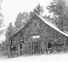 Pioneer Barn 1904 by Jim Stiles
