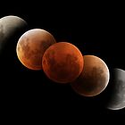 Lunar Eclipse by Phil Hart