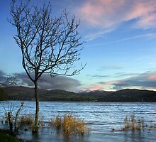 Windermere by Andrew Briggs