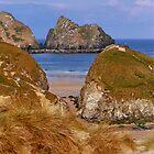 Gull Rocks by Tainia Finlay