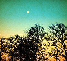 Vintage moon by MyriadPhoto