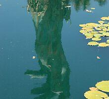 Reflection of Holocaust Memorial - Miami  by Nala