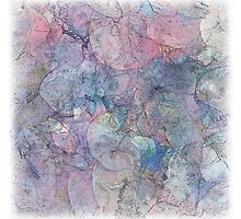 The Atlas Of Dreams - Color Plate 37 by Richard Maier