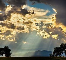 Sunlight Raining Down From the Heavens by Bo Insogna