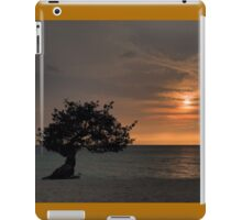 Serenity awaits  iPad Case/Skin