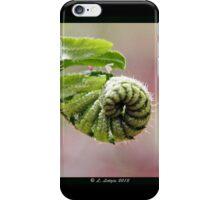 Fiddlehead iPhone Case/Skin