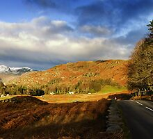 The Road to Chapel Stile by Andrew Briggs