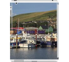 Dingle Harbour County Kerry Ireland iPad Case/Skin