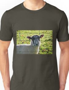 Ewe Looking At Me? Unisex T-Shirt