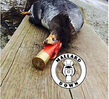 Duck Logo - Mallard Down by mallarddown