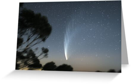 Comet McNaught from Mt Macedon by Phil Hart