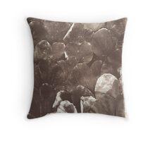 autumn whispers 2 Throw Pillow