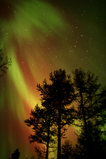 Aurora Borealis - The Northern Lights by Phil Hart