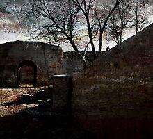 An Ancient City on Jingtai Gobi Desert 08 by Zhaomin