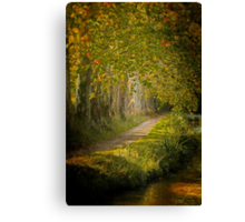 Path in the light Canvas Print