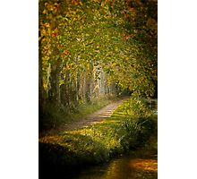 Path in the light Photographic Print