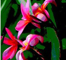 Tropical Frangipanis by Maurz