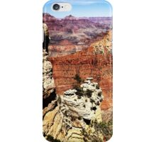 Hiking the Grand Canyon 2014 iPhone Case/Skin