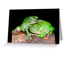 Australian Green Tree Frog [Litoria caerulea] Greeting Card