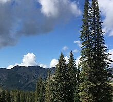 Tushar Mountain Summer Day 2013 by nativeminnow