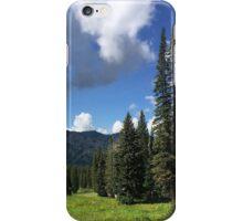 Tushar Mountain Summer Day 2013 iPhone Case/Skin