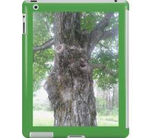 Maple Tree in Duluth iPad Case/Skin