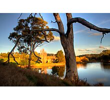 View from the hill at Appletree Cottage Photographic Print