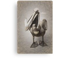 Pelican With His Catch Canvas Print