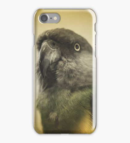 the feathery fluff of Bahb iPhone Case/Skin