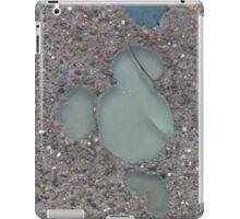 DCA Hidden Mickey iPad Case/Skin